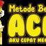 Logo ACM Web 2